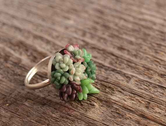 succulent ring NYC