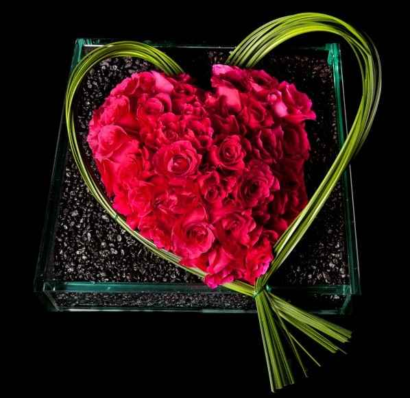 Sympathy & Funeral Flowers